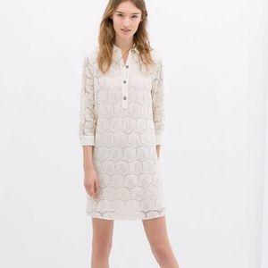 Zara Basic Lace Shirtdress NWT